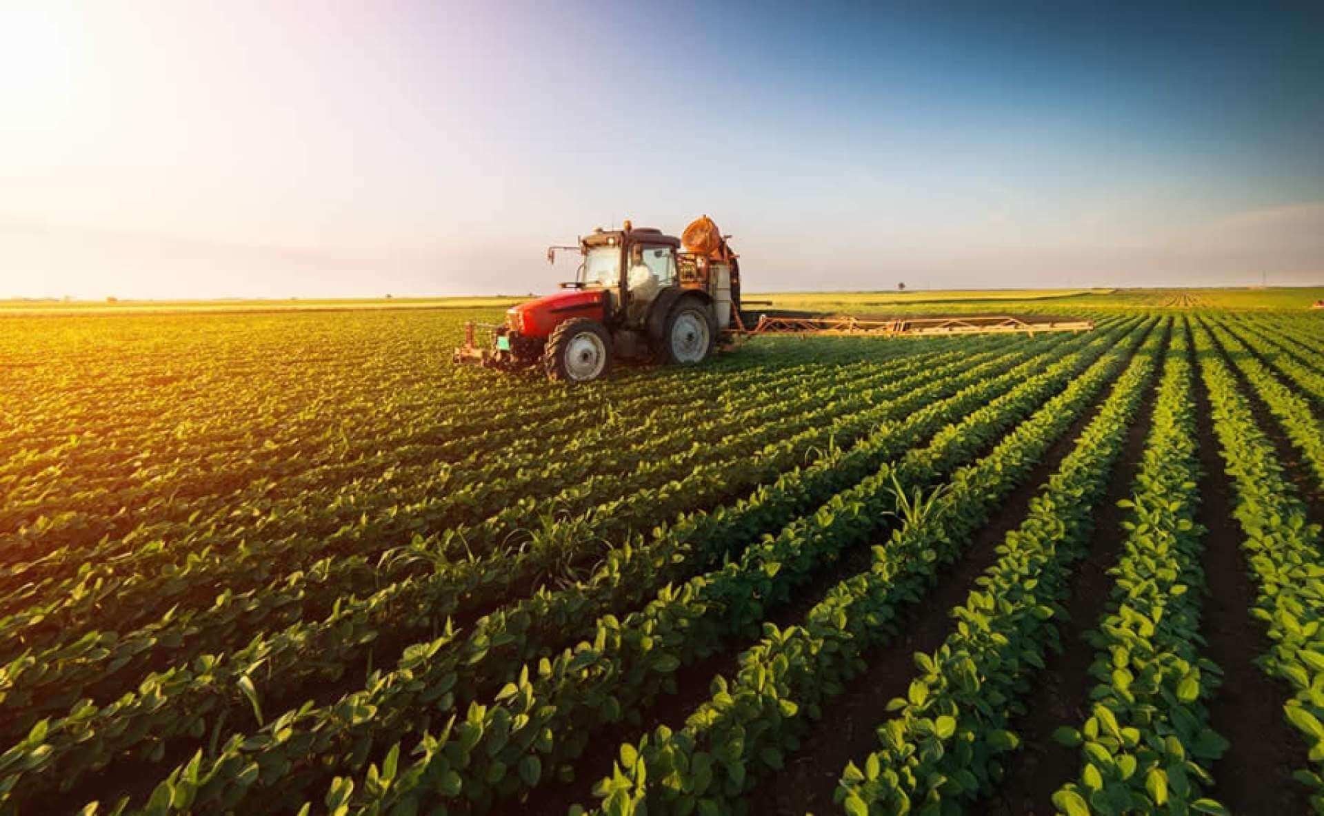 Seguro-para-maquinas-agricolas